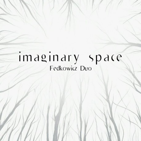 Fedkowicz Duo - Imaginary Space